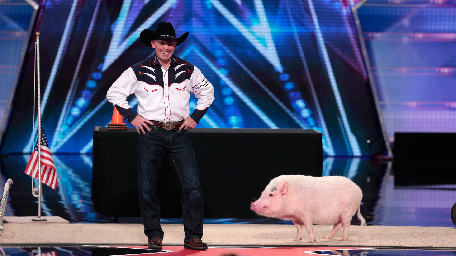 Mudslinger, a pig trained by John Vincent, on episode 903 of America's Got Talent.