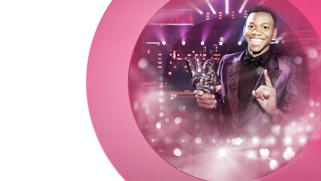 The Voice - NEW SITE - S12 - WINNER