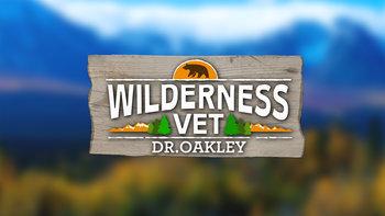 Wilderness Vet