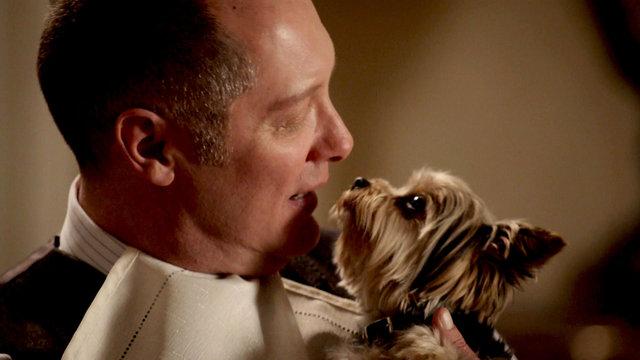 Have You Met Mr. Reddington?