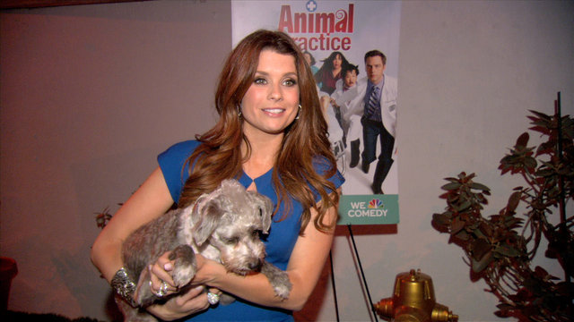 At the Doggie Spa: JoAnna
