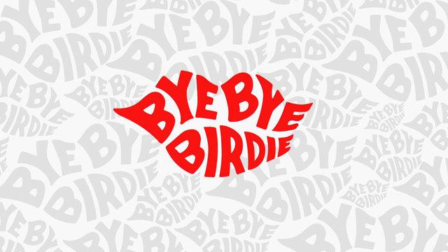 Introducing NBC's Next Musical, Bye Bye Birdie!