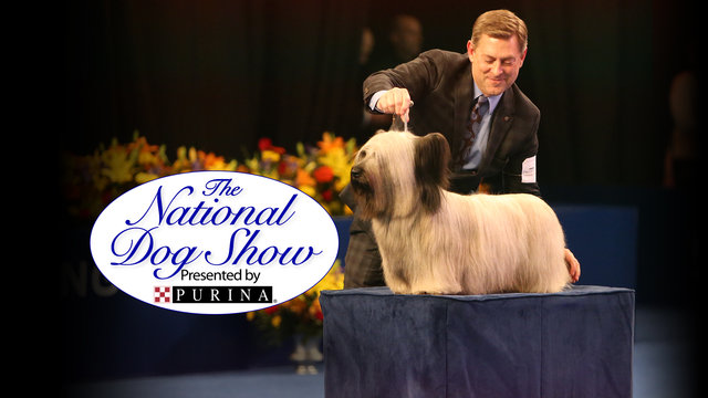 The National Dog Show