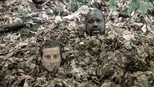 Shaq Becomes One with the Leaves