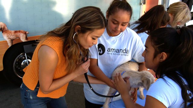 Give to Pet Owners and Their Furry Friends in South Los Angeles