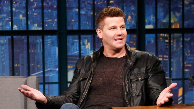David Boreanaz Was a Ball Boy for the Steelers