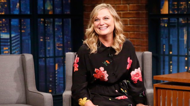 Amy Poehler Is Rewatching the First 10 Seasons of Law & Order