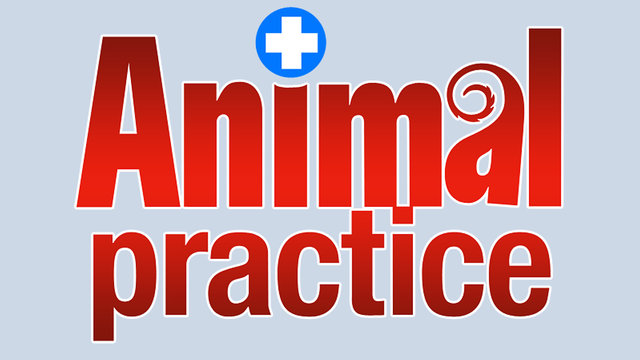 Animal Practice