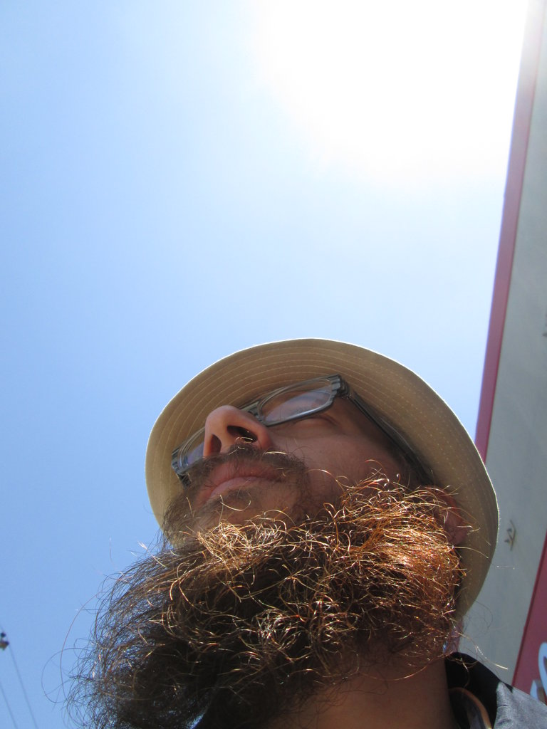 A Beard's Eye View