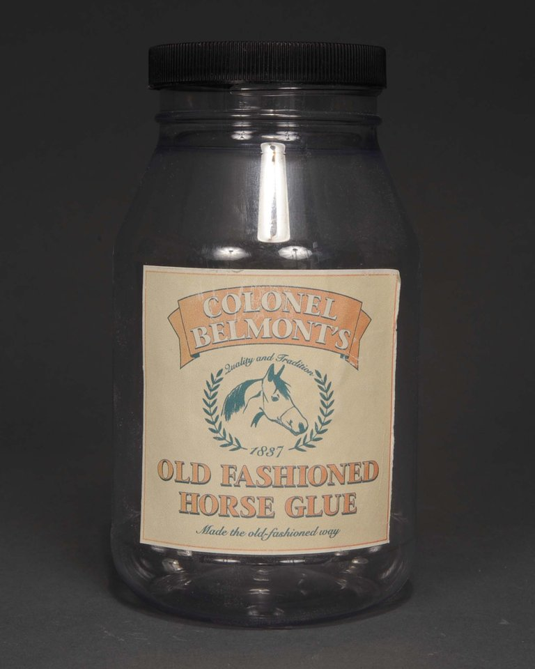 Colonel Belmont's Old Fashioned Horse