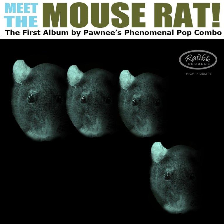 Meet the Mouse Rat