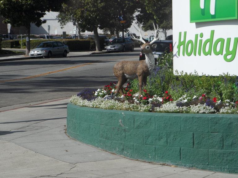 Rednecks in L.A.!