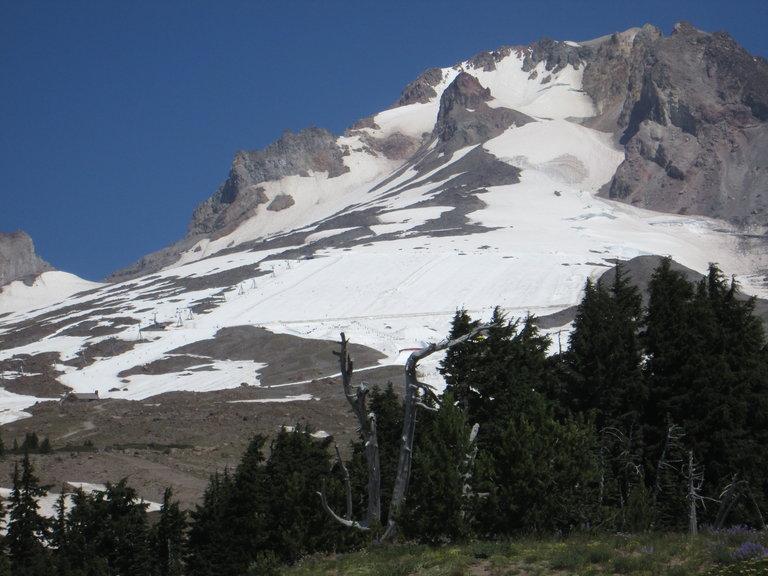 Summit and Palmer Field