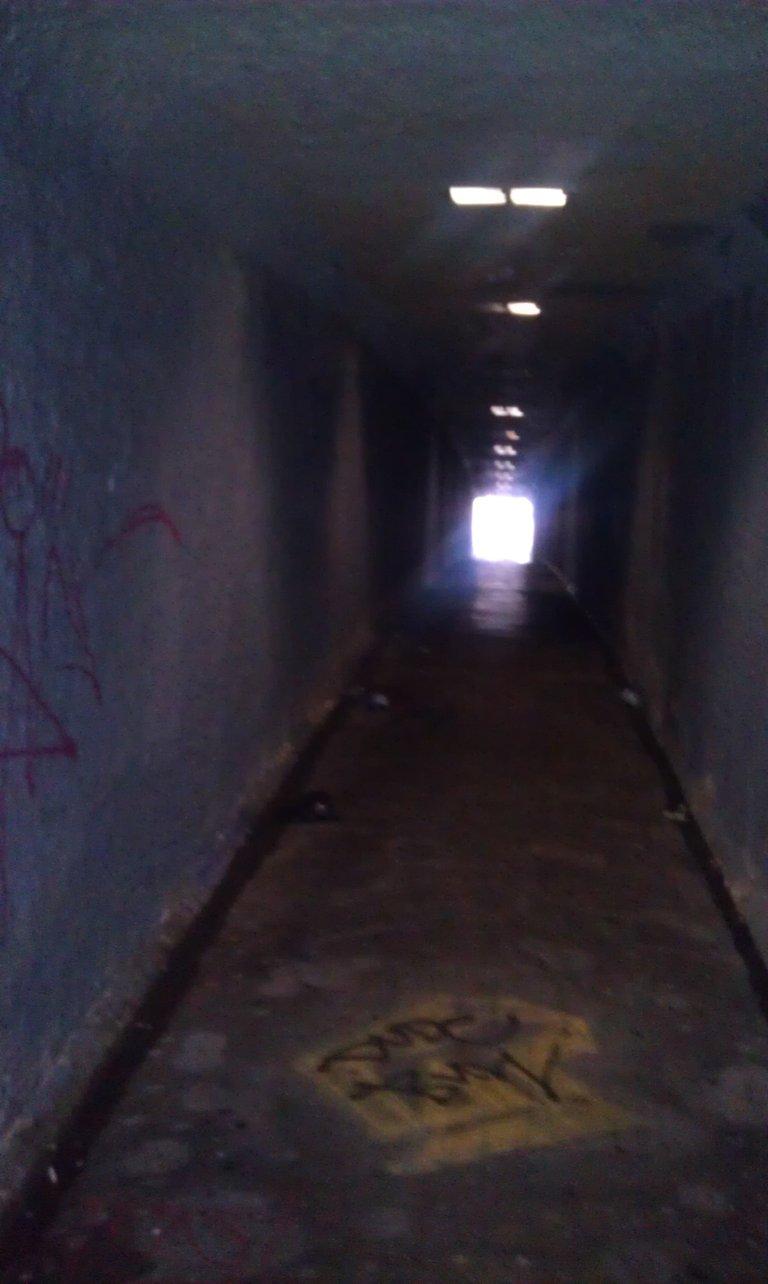 creepy tunnel on my daily walk