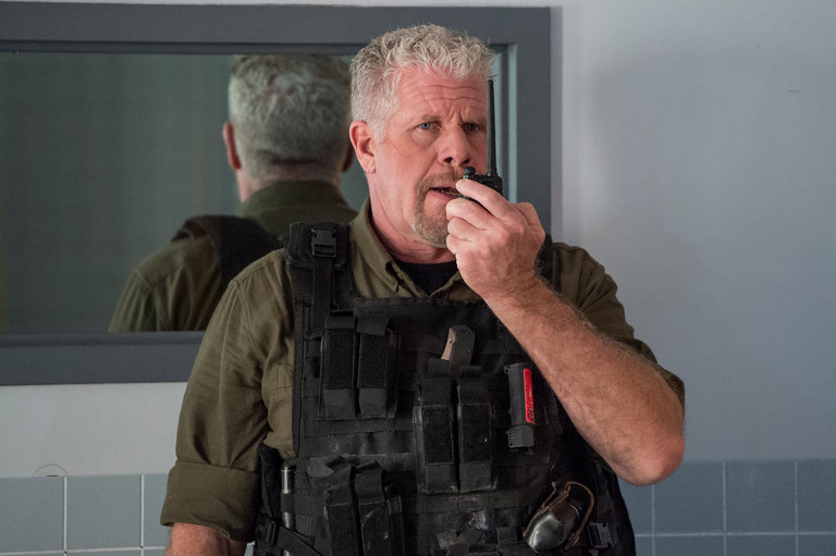 All About Guest Star Ron Perlman