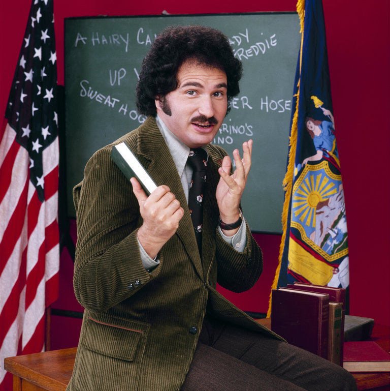 Gabe Kaplan as Mr. Gabe Kotter on Welcome Back, Kotter