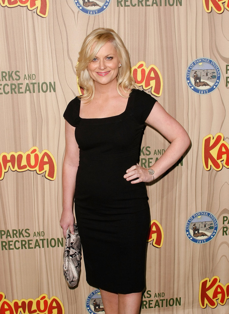 "Premiere Of NBC's ""Parks & Recreation"""