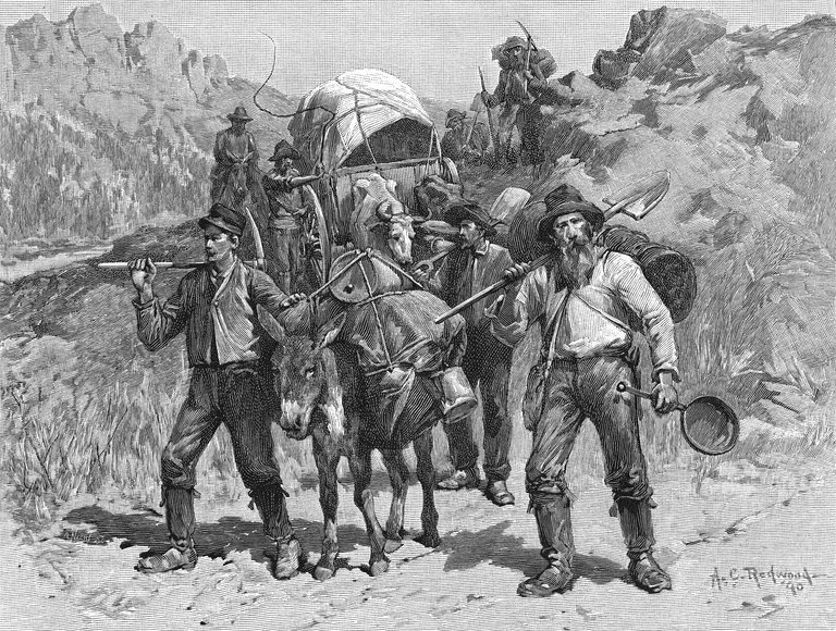Miners During The California Gold Rush