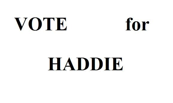 Haddie for President