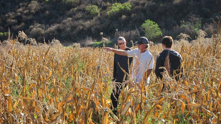 Stunt coordinator Tim Gilbert (hat) explains the tackle to Jason Ritter (right) and stuntman Mark Vanslow.