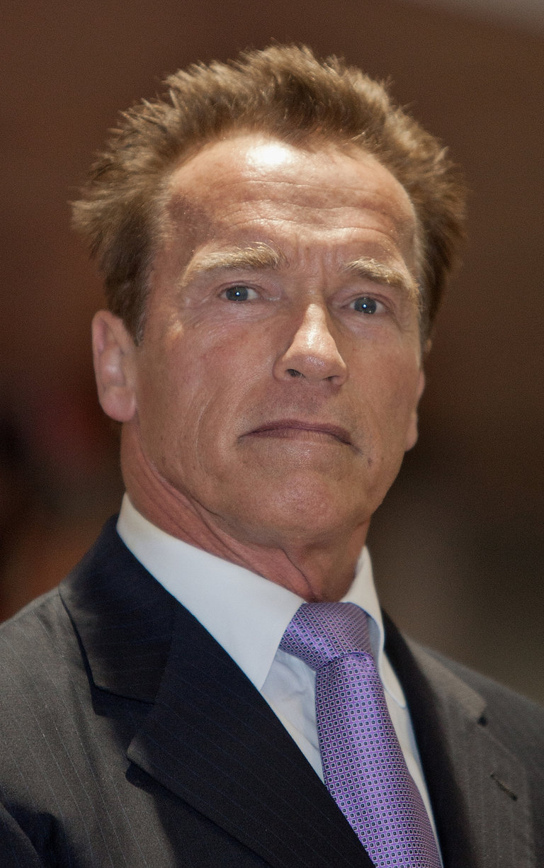 Arnold Schwarzenegger attends 'Arnold Classic Europe' 2011 Party