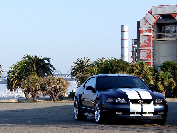 2001 - Ford, Mustang