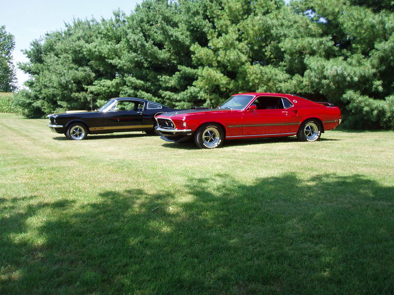 1965 - Ford Mustangs, GT 350 H tribute & 1969 Mach 1