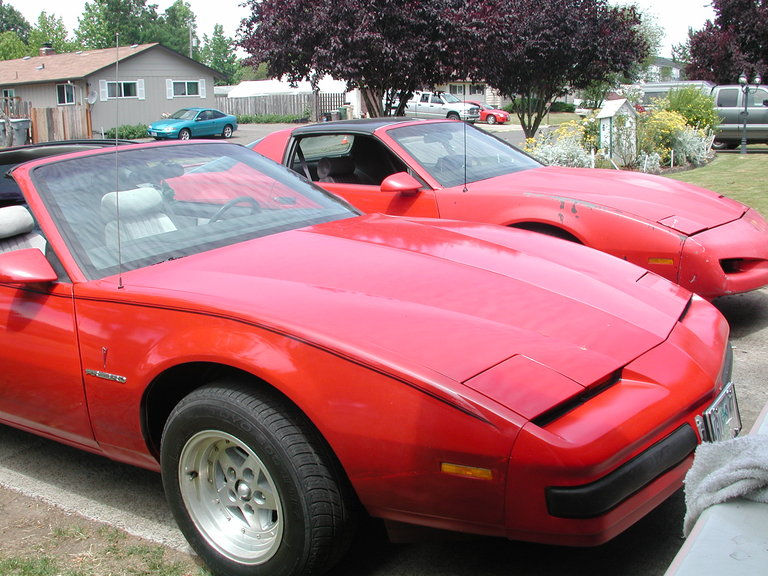 1986 - Pontiac, Firebird