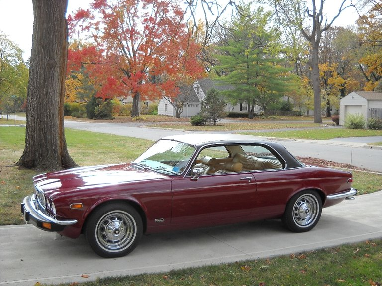 1975 - Jaguar - Jaguar