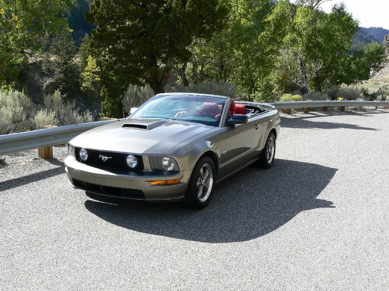 2005 - Ford - Mustang