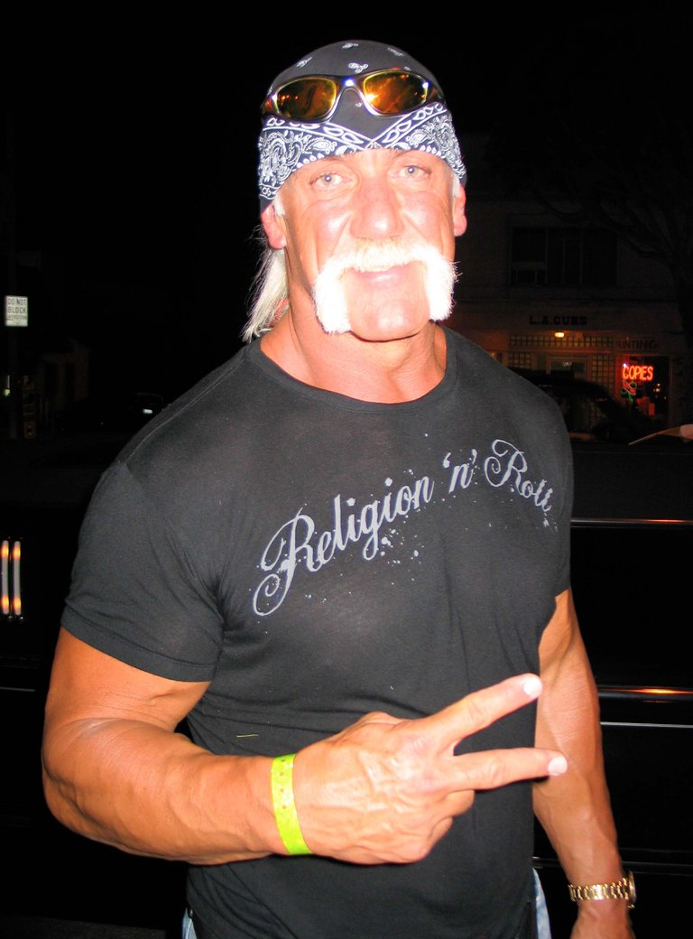 Hulk Hogan Candid
