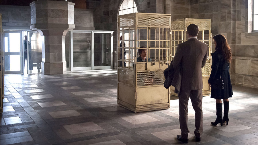 As the FBI seeks Will's help in tracking a killer who turns his victims' bodies into art, Will plots to reveal the truth about Hannibal.