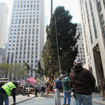 Rockefeller Center Christmas Tree Arrives In Plaza