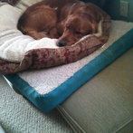 George with 3 Beds
