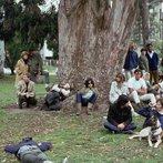 Hippies In Park