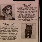 Look at little Toby and Fauna. So cute...
