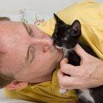 I can haz kitten?