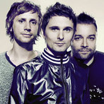 Muse Photo Bumpers