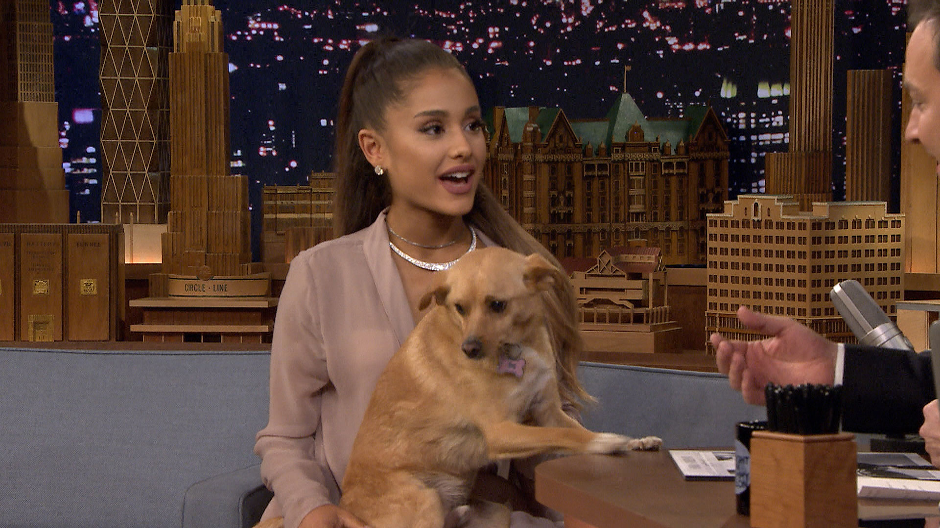 Ariana grande shows off her winking dog toulouse and sassy nonna the