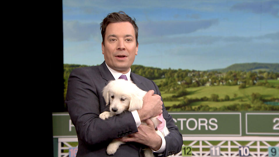 Puppies Predict the 2016 Kentucky Derby