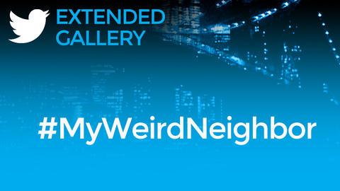 Hashtag Gallery: #MyWeirdNeighbor