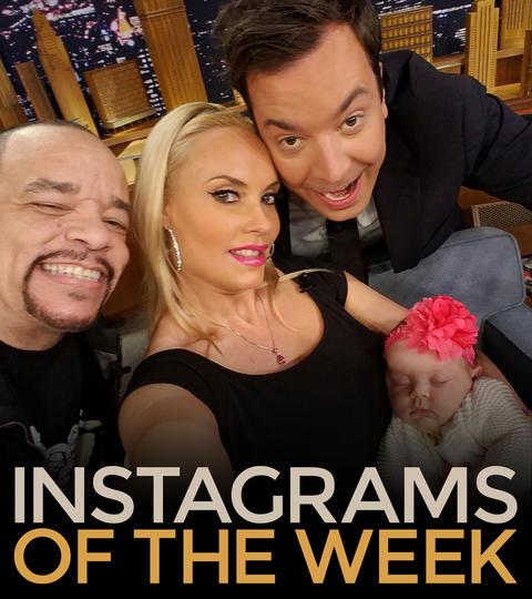 Instagrams of the Week: 3/21/16