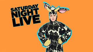 Watch Sofa King From Saturday Night Live NBCcom - Sofa king